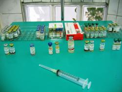 vakcinacija psa i mačke
