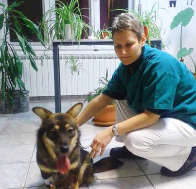 veterinarska bolnica